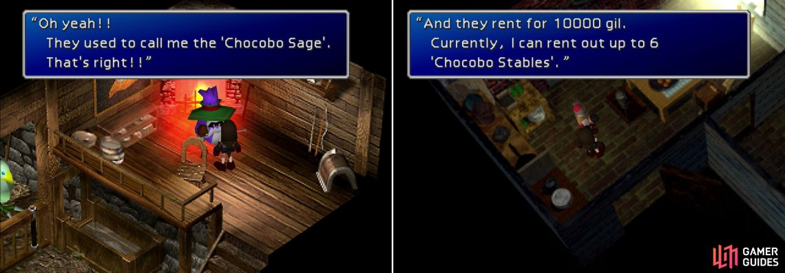 Talk to the Chocobo Sage to learn about breeding epic birds, and to buy high-quality Greens (left). Make sure to buy some stables to house your captured Chocobos! (right)