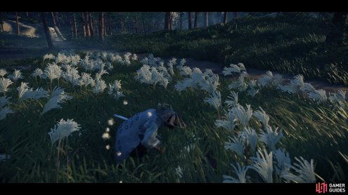 then hide in the tall grass until the bandits arrive.