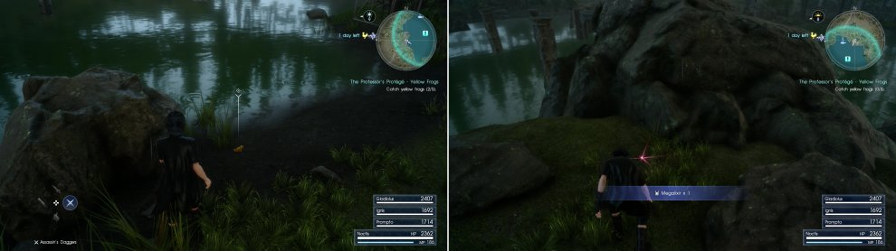 Search around the Forgotten Pool Fishing Spot to find yellow frogs (left), and while you're here, search a Treasure Spot to find a Megalixir (right).
